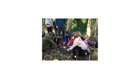 Bushcraft with Year 4